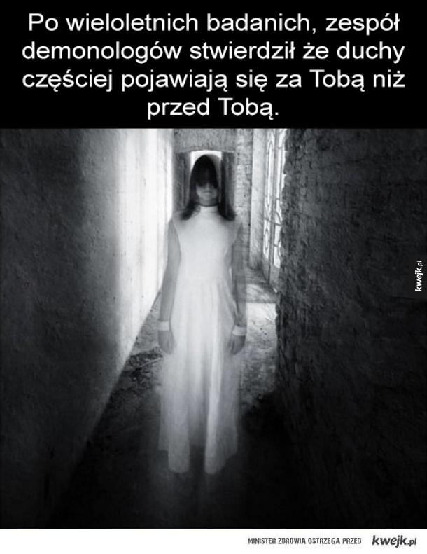 Duchy - Po wieloletnich badanich, zespół demonologów stwierdził że duchy  częściej pojawiają się za Tobą niż przed Tobą.