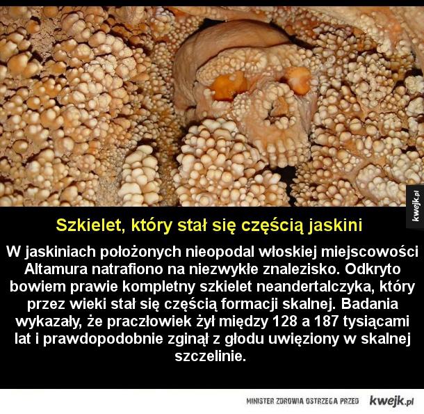 Szkielet, który stał się częścią jaskini - W jaskiniach położonych nieopodal włoskiej miejscowości Altamura natrafiono na niezwykłe znalezisko. Odkryto bowiem prawie kompletny szkielet neandertalczyka, który przez wieki stał się częścią formacji skalnej. Badania wykazały, że praczłowiek żył między