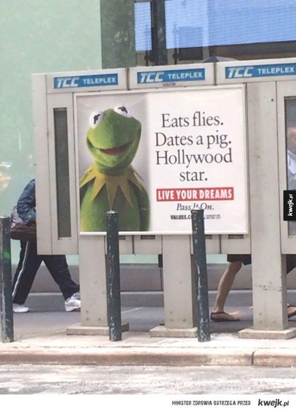 Kermit na prezydenta
