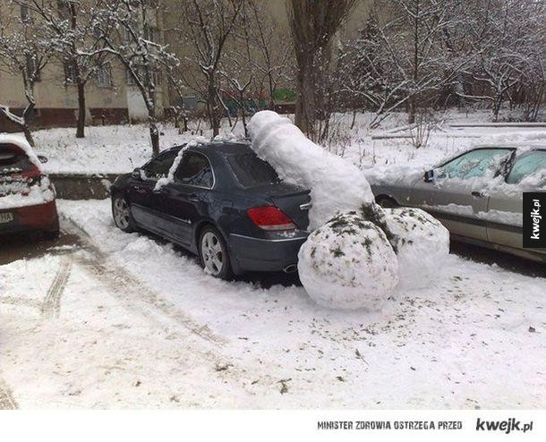 Naucz się parkować baranie!