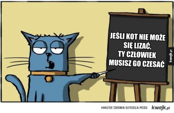 Kot nauczyciel