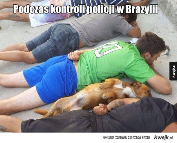 Tymczasem w Brazylli