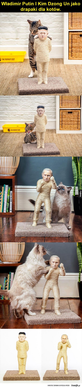 Władimir Putin I Kim Dzong Un jako drapaki dla kotów.