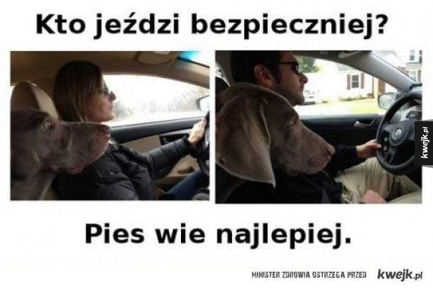 Kto jeździ bezpieczniej?
