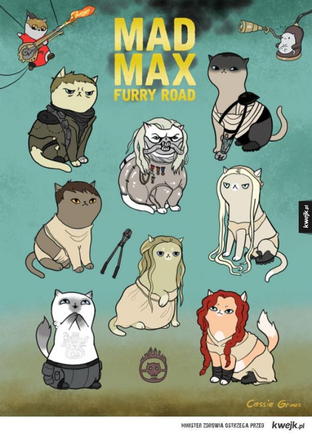 Kocia wersja mad maxa