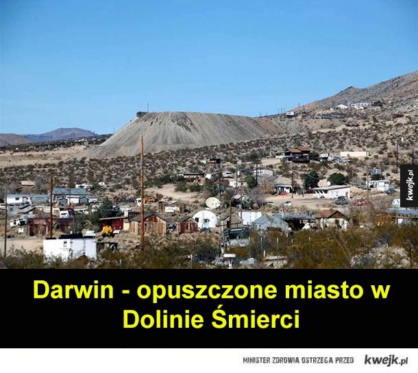 Darwin - miasto odmieńców