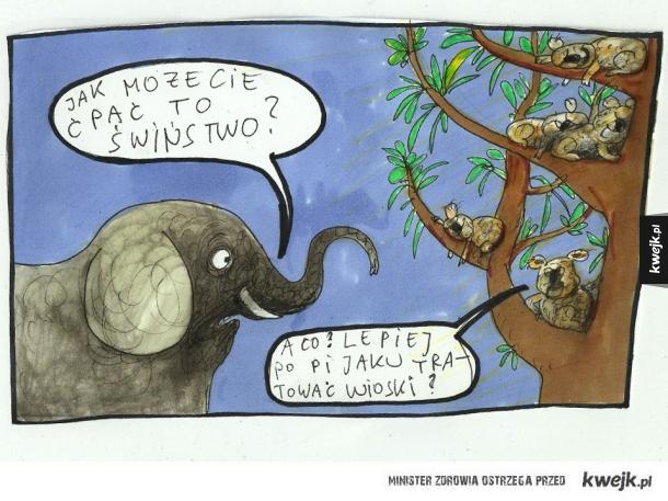 Zwierzęta i ich używki