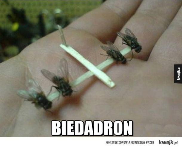 Biedadron
