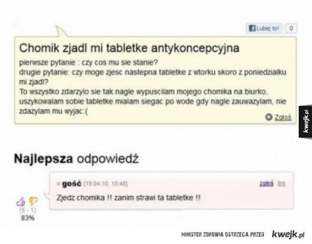 Chomik zjadł tabletkę