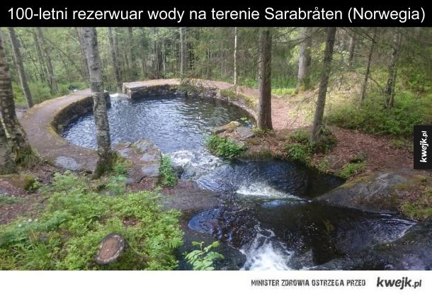 Leśny basen