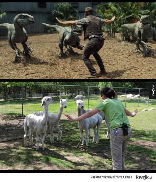 Pracownicy ZOO parodiują słynną scenę z Jurassic World