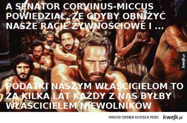 Senator Corvinus Miccus