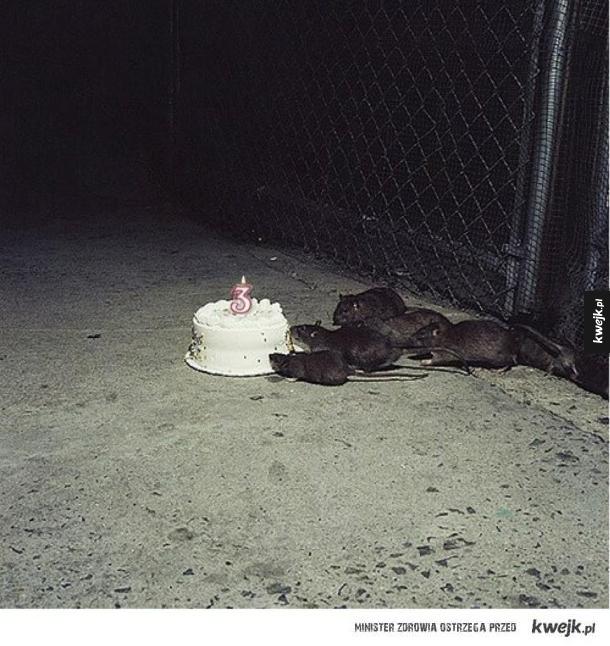 Ktoś ma urodziny