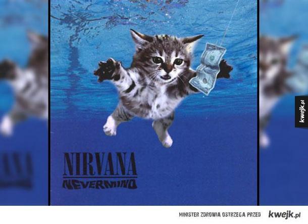 Kociaki na okładkach słynnych albumów muzycznych