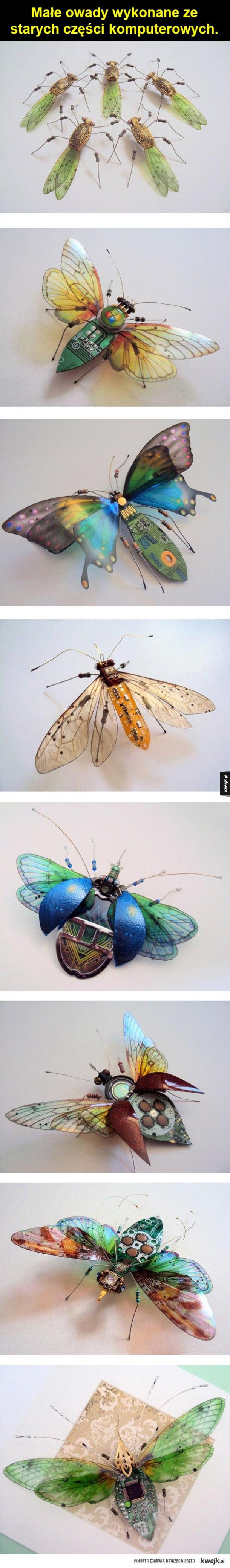 Orginalne owady