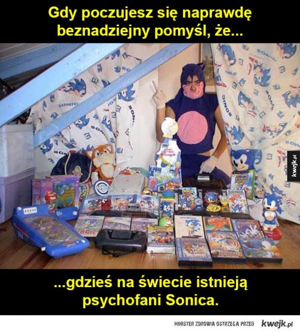 Fani Sonica