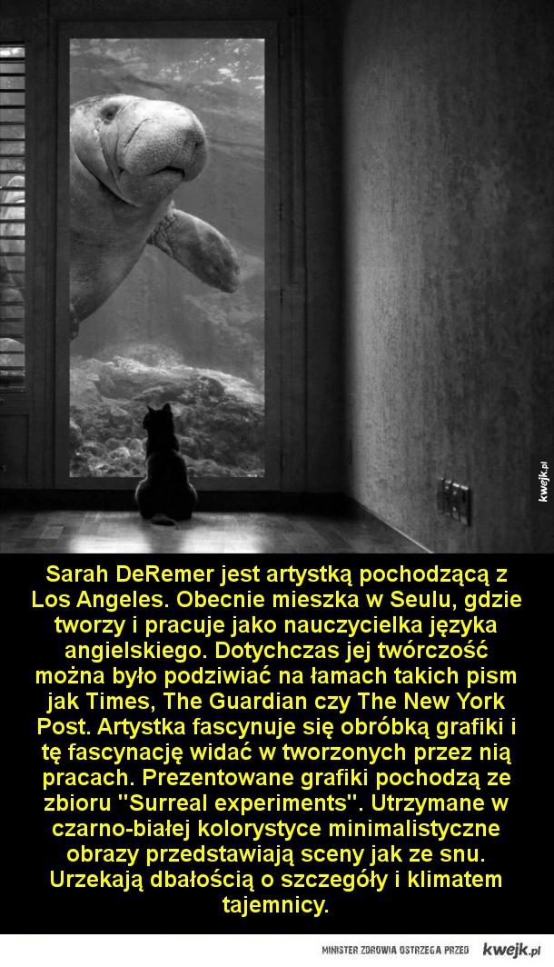 Surrealistyczne eksperymenty - Surrealistyczne eksperymenty  Sarah DeRemer jest artystką pochodzącą z Los Angeles. Obecnie mieszka w Seulu, gdzie tworzy i pracuje jako nauczycielka języka angielskiego. Dotychczas jej twórczość można było podziwiać na łamach takich pism jak Times, The Gu