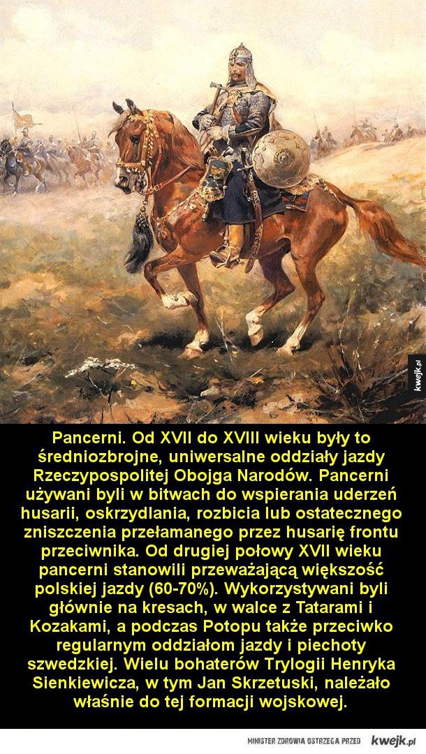 Najsłynniejsze polskie formacje wojskowe - Pancerni. Od XVII do XVIII wieku były to średniozbrojne, uniwersalne oddziały jazdy Rzeczypospolitej Obojga Narodów. Pancerni używani byli w bitwach do wspierania uderzeń husarii, oskrzydlania, rozbicia lub ostatecznego zniszczenia przełamanego przez husar