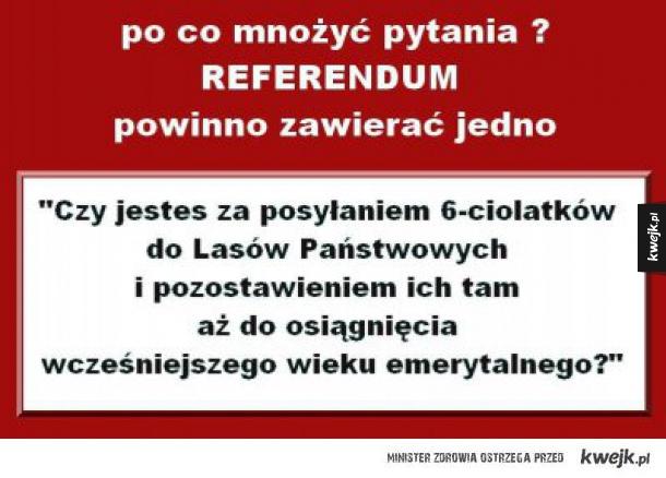 Jestem za zawarciem tego pytania w referendum