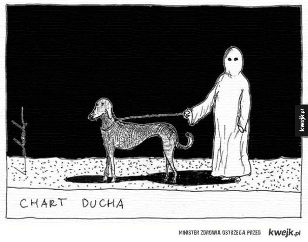 Chart ducha