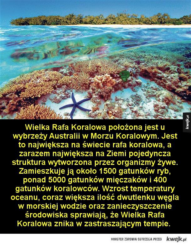 Niezwykłe miejsca, które mogą niedługo przestać istnieć - Wielka Rafa Koralowa położona jest u wybrzeży Australii w Morzu Koralowym. Jest to największa na świecie rafa koralowa, a zarazem największa na Ziemi pojedyncza struktura wytworzona przez organizmy żywe. Zamieszkuje ją około 1500 gatunków ryb, ponad 5000 g