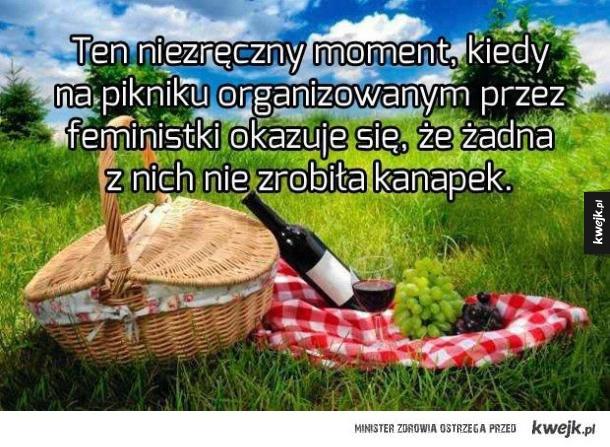 Feministyczny piknik