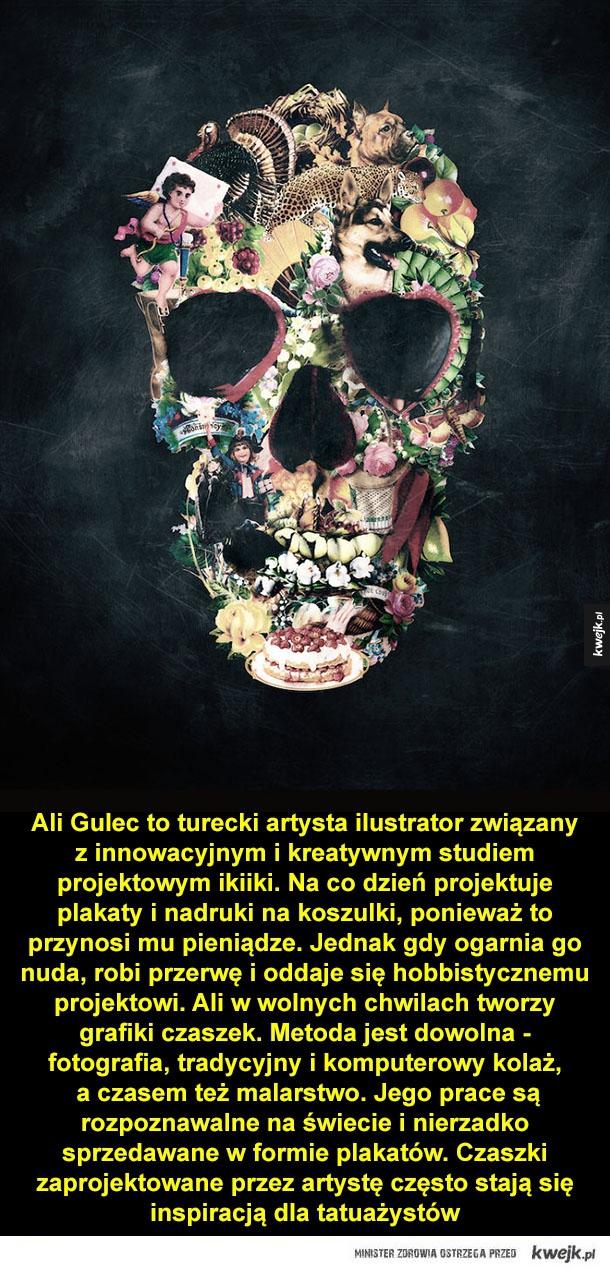 Co się w czaszce mieści? - Ali Gulec to turecki artysta ilustrator związany jest z innowacyjnym i kreatywnym studiem projektowym ikiiki. Na co dzień projektuje plakaty i nadruki na koszulki, ponieważ to przynosi mu pieniądze. Jednak gdy ogarnia go nuda, robi przerwę i oddaje się hob