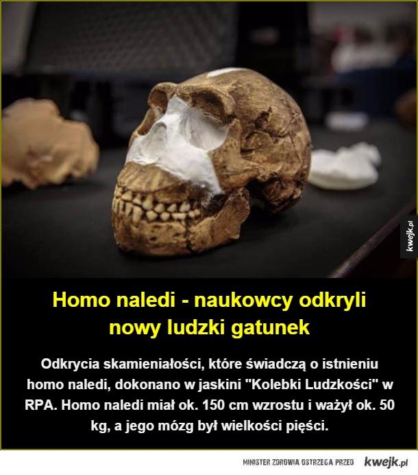 Inne metody datowania skamielin