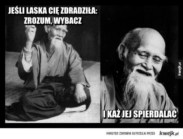 mądre cytaty Mądre cytaty   Ministerstwo śmiesznych obrazków   KWEJK.pl mądre cytaty