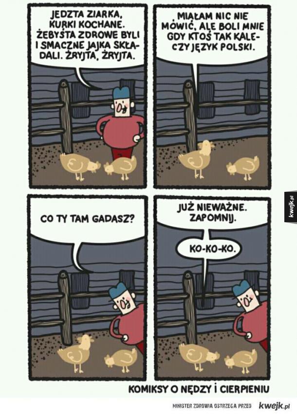 Kury i rolnik