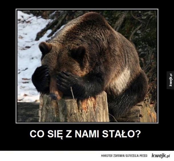 Smutny niedźwiedź