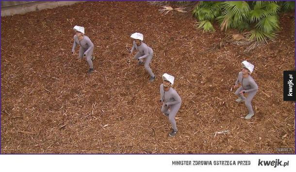 Raptory z Jurassic World przed obróbką komputerową