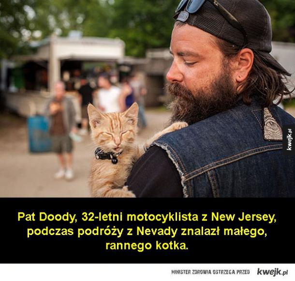 Pat i kot, kot i Pat
