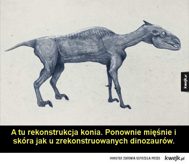 Jak naprawdę wyglądały dinozaury?