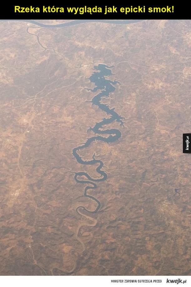 Smoka widzę w tej rzece