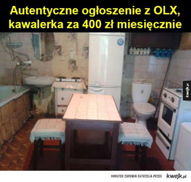 Autentyczne ogłoszenie z OLX