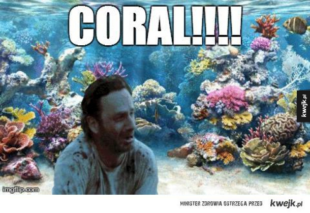 Corall!