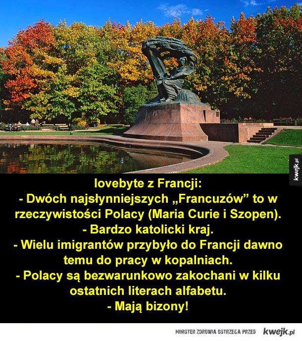 polska, polacy, francja, chopin, skłodowska curie, bizon, żubr
