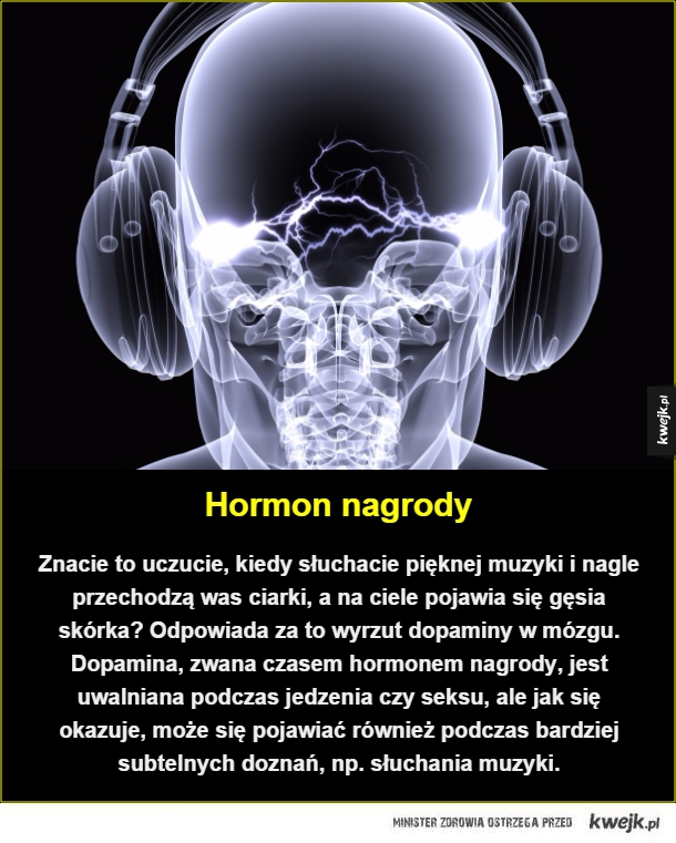 Hormon nagrody. Znacie to uczucie, kiedy słuchacie pięknej muzyki i nagle przechodzą was ciarki, a na ciele pojawia się gęsia skórka? Odpowiada za to wyrzut dopaminy w mózgu. Dopamina, zwana czasem hormonem nagrody, jest uwalniana podczas jedzenia czy seks
