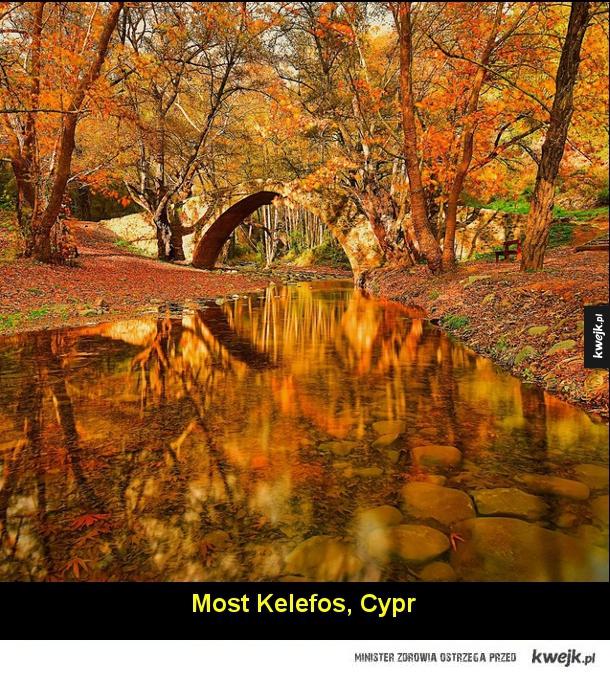 Jesień na fotografiach z całego świata