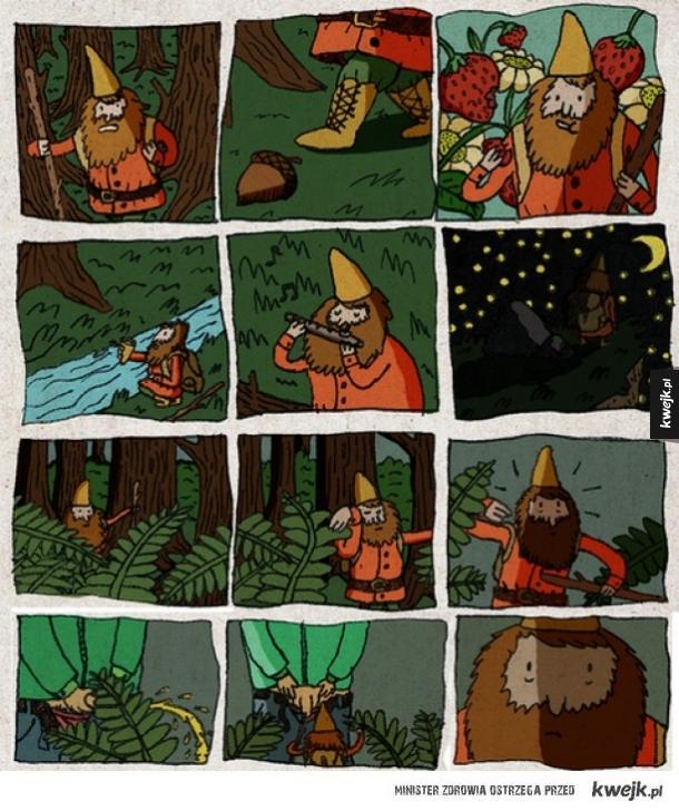 Przygody krasnoludka