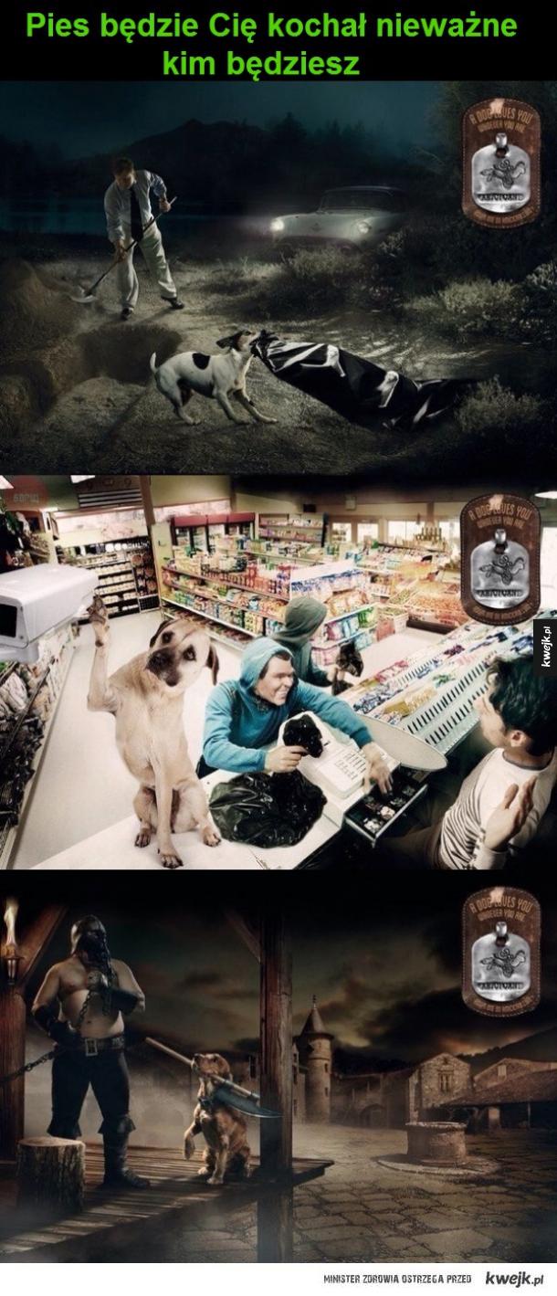 Reklama schroniska dla zwierząt
