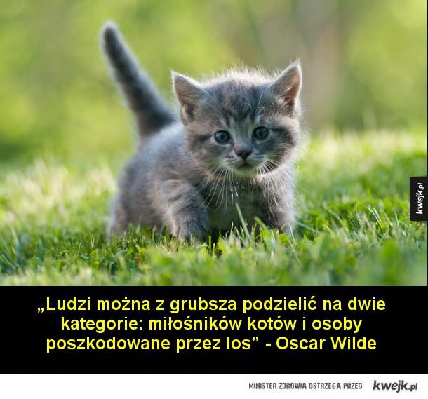 """Znani pisarze o kotach - """"Gdyby można było skrzyżować człowieka z kotem, skorzystałby na tym człowiek, a stracił kot"""" – Mark Twain  """"Ludzi można z grubsza podzielić na dwie kategorie: miłośników kotów i osoby poszkodowane przez los"""" - Oscar Wilde  """"Rzuć patyk, a służalczy pies prz"""