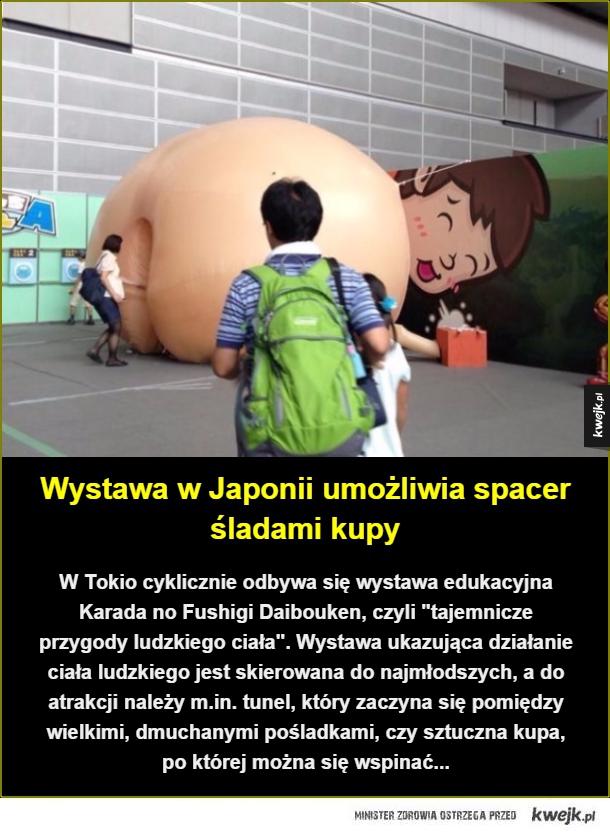 Edukacja od dupy strony... - Wystawa w Japonii umożliwia spacer śladami kupy. W Tokio cyklicznie odbywa się wystawa edukacyjna Karada no Fushigi Daibouken, czyli