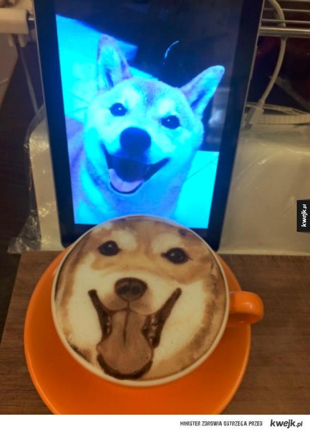 Pieseł latte
