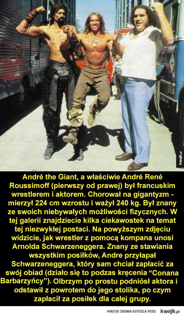 André the Giant - legendarny wrestler - Andre the Giant, a właściwie Andre Rene Roussimoff (pierwszy od prawej) był francuskim wrestlerem i aktorem. Chorował na gigantyzm -mierzył 224 cm wzrostu i ważył 240 kg. Był znany ze swoich niebywałych możliwości fizycznych. W tej galerii znajdziecie kilk