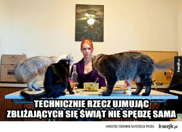 Wigilia z kotami