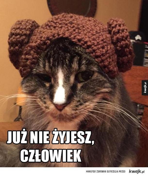 Księżniczka Leia?