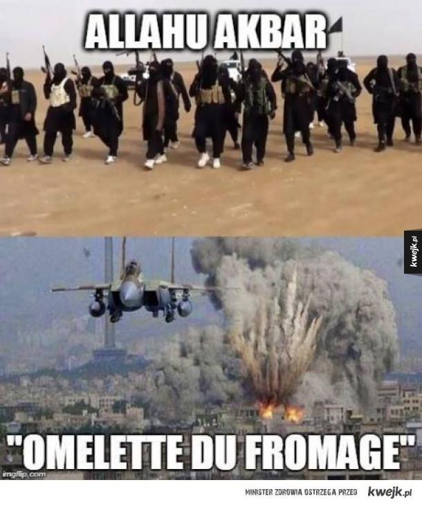 Odpowiedź Francji