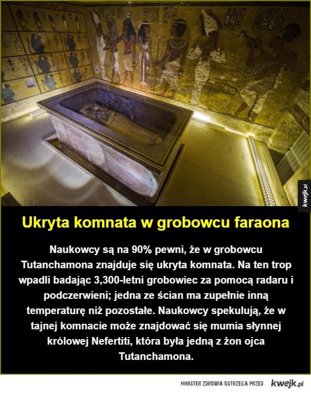 Tajemnice faraonów wciąż niezbadane - Ukryta komnata w grobowcu faraona. Naukowcy są na 90% pewni, że w grobowcu Tutanchamona znajduje się ukryta komnata. Na ten trop wpadli badając 3,300-letni grobowiec za pomocą radaru i podczerwieni; jedna ze ścian ma zupełnie inną temperaturę niż pozostałe